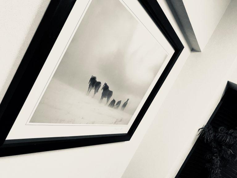 事務所の応接室の様子です。④阿蘇の馬の写真です。